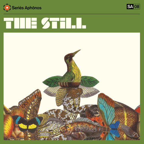Series Aphonos: Tanger THE STILL - Album