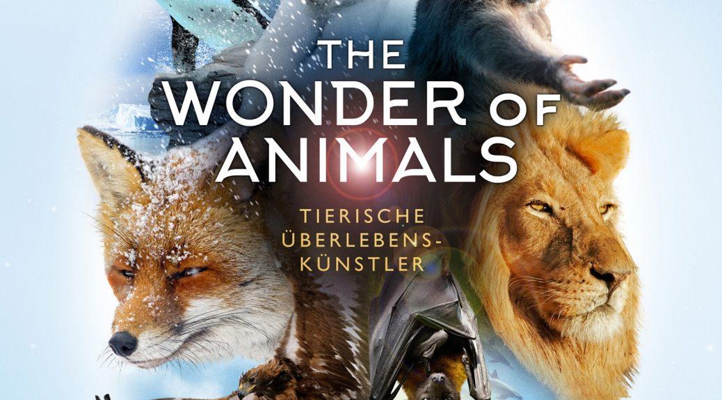 The Wonder of Animals - Tierische Überlebenskünstler DVD